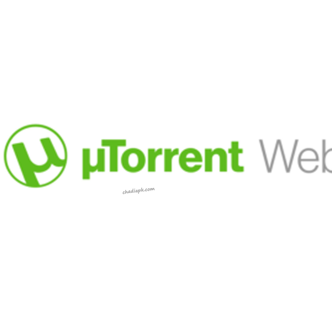 how to use torrents